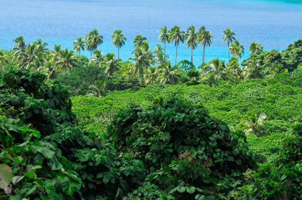 Cenário tropical, Champagne Beach, Espiritu Santo, Vanuatu