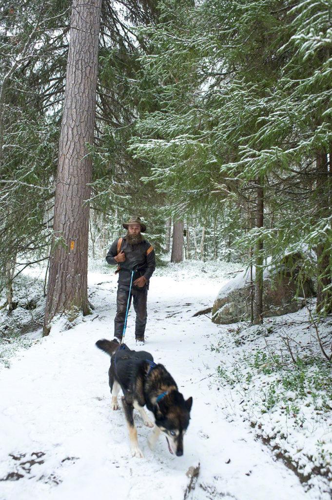 Era Susi rebocado por cão, Oulanka, Finlandia