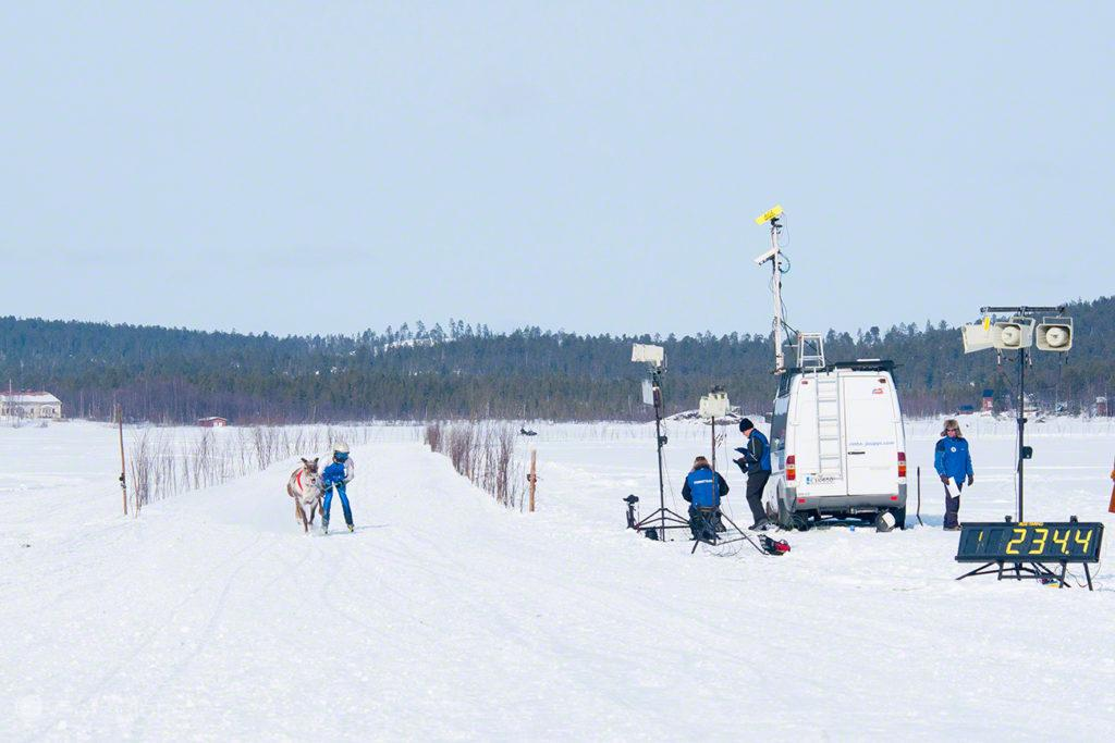 Meta a vista, corrida de Renas , Kings Cup-Inari-Finlândia