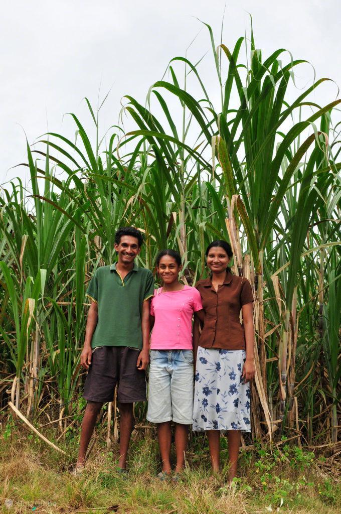 Trio indo-fijiano, Ba, Viti Levu, Fiji