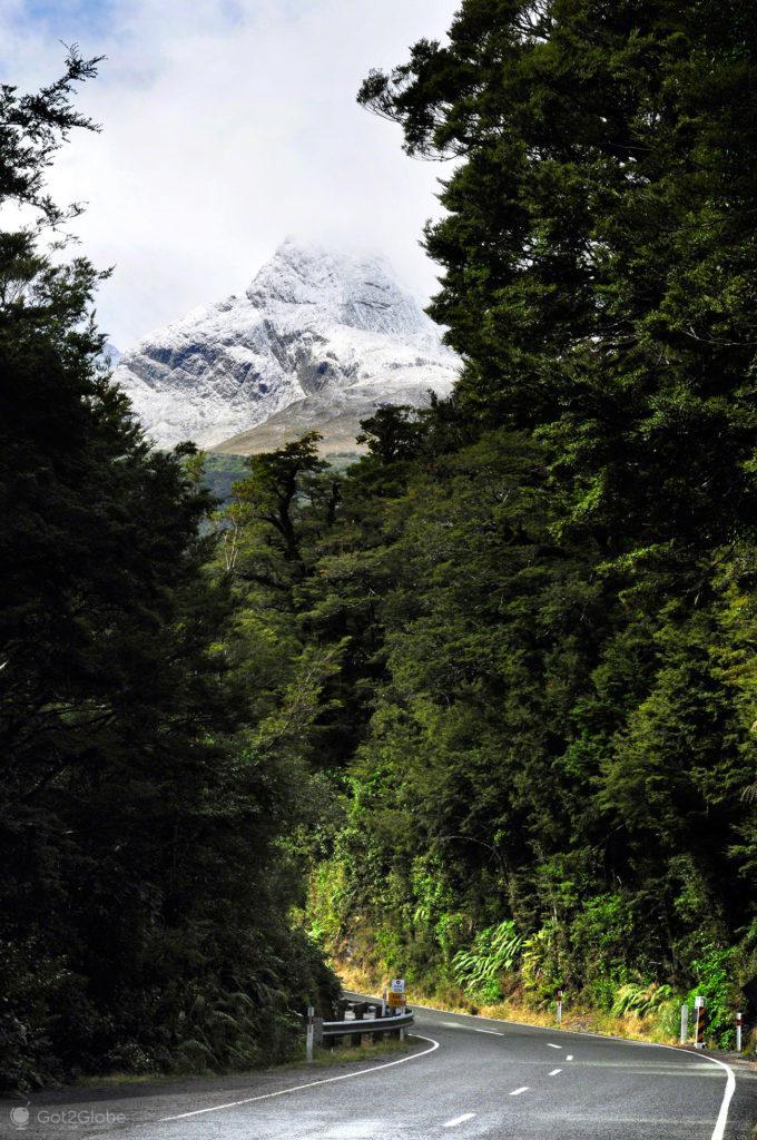 Te Anau a Milford Sound highway, Fiordland National Park,Nova Zelândia