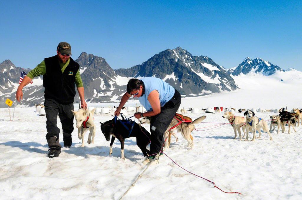 Tratadores e cães, acampamento dog mushing, Godwin, Seward, Alasca
