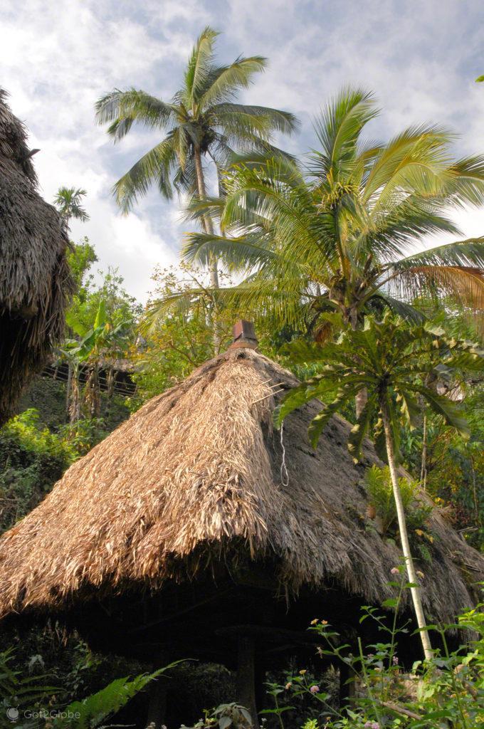 abrigo, palhota, palmeira, socalcos arroz, batad, filipinas