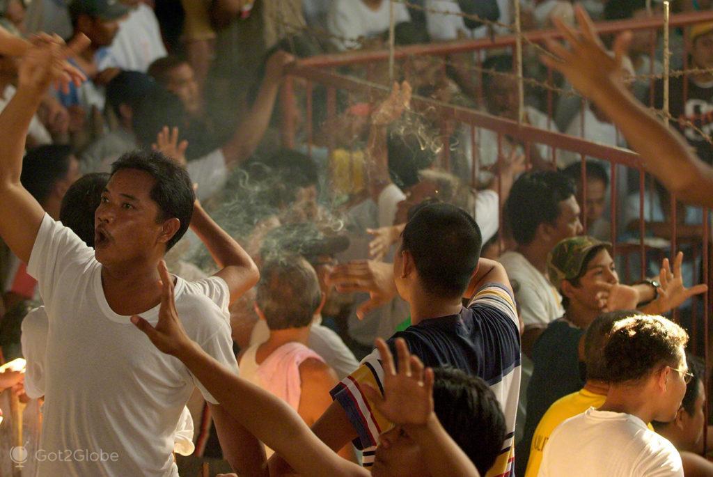 apostas, luta de galos, filipinas