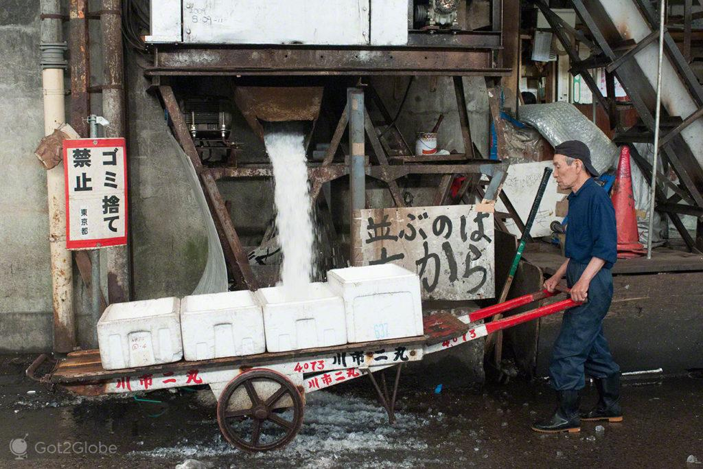 carga de gelo, reino deposto, mercado, Tsukiji, toquio, japao