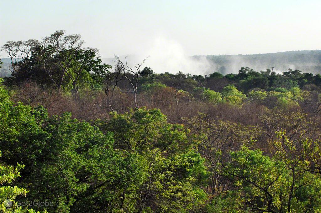 Cataratas de Victoria, Zimbabwe, Névoa