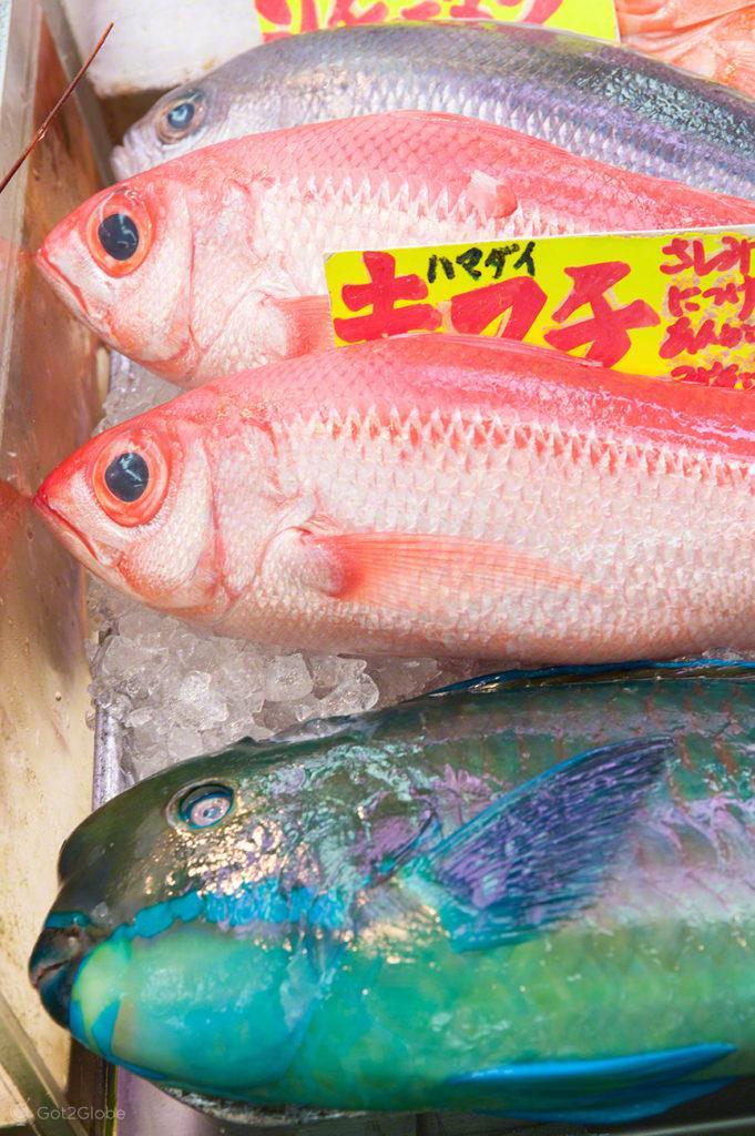 peixe-venda-reino deposto, mercado, Tsukiji, toquio, japao
