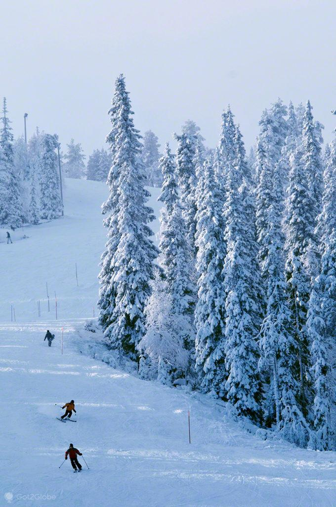 rukka, esqui, descida, parque nacional oulanka, finlandia