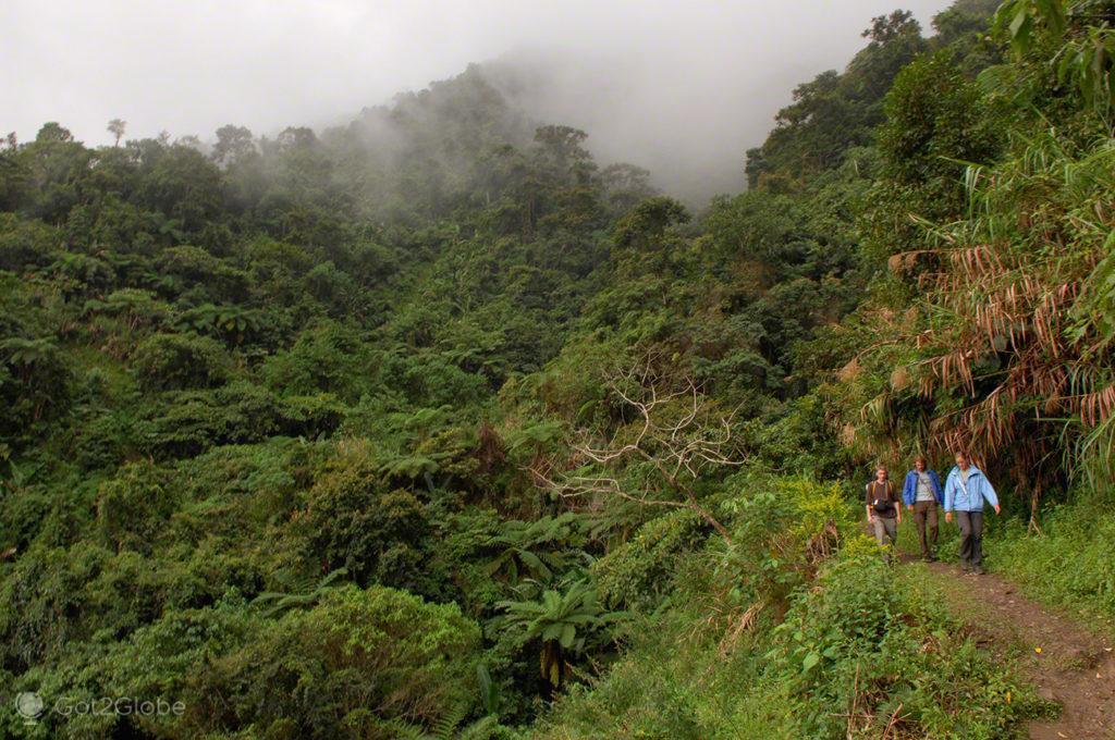 visitantes, explorar, socalcos arroz, batad, filipinas