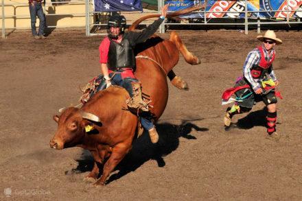 cowboys oceania, Rodeo, El Caballo, Perth, Australia