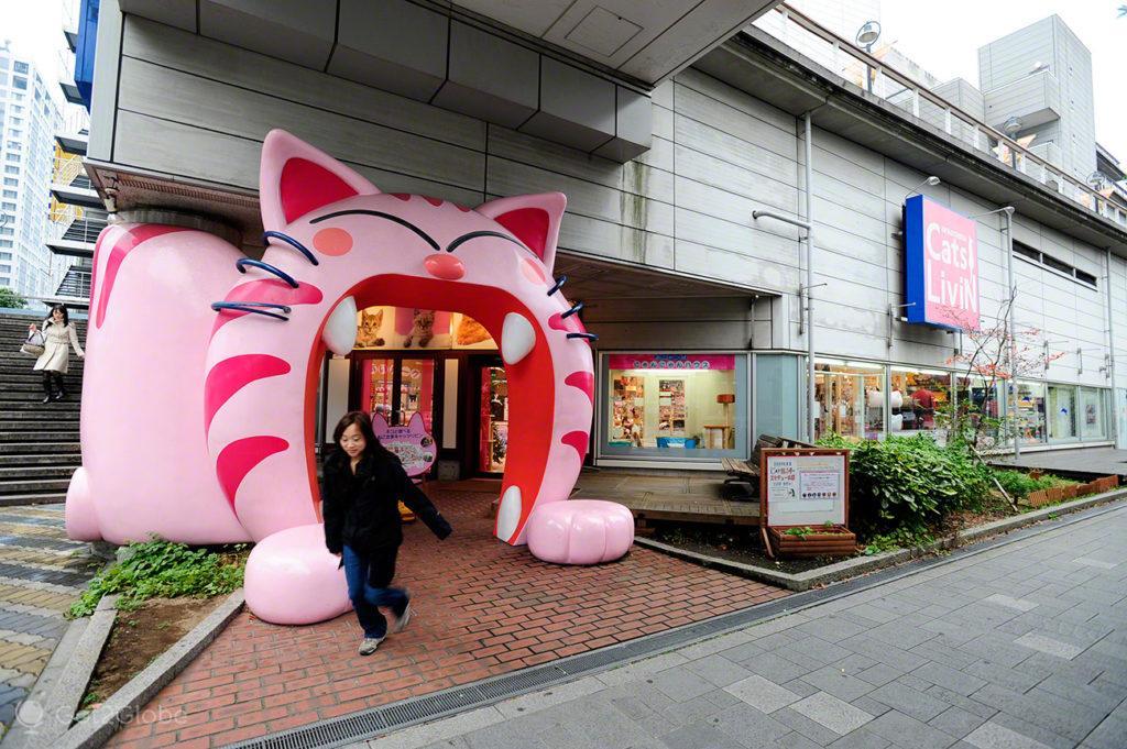 Gatis de Tóquio, Japão - de saída