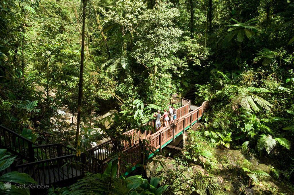 Rio Carbet, Guadalupe, Caribe, Efeito Borboleta, Antilhas Francesas