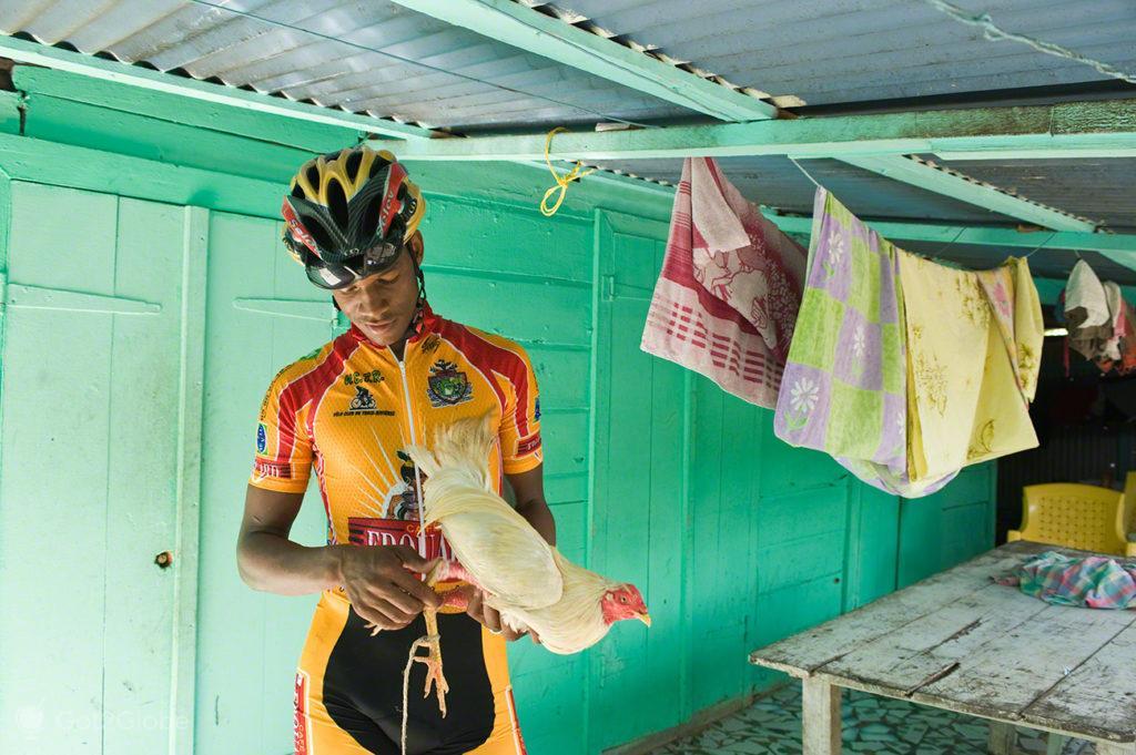 Ciclismo e luta de galos, Guadalupe, Caribe, Efeito Borboleta, Antilhas Francesas
