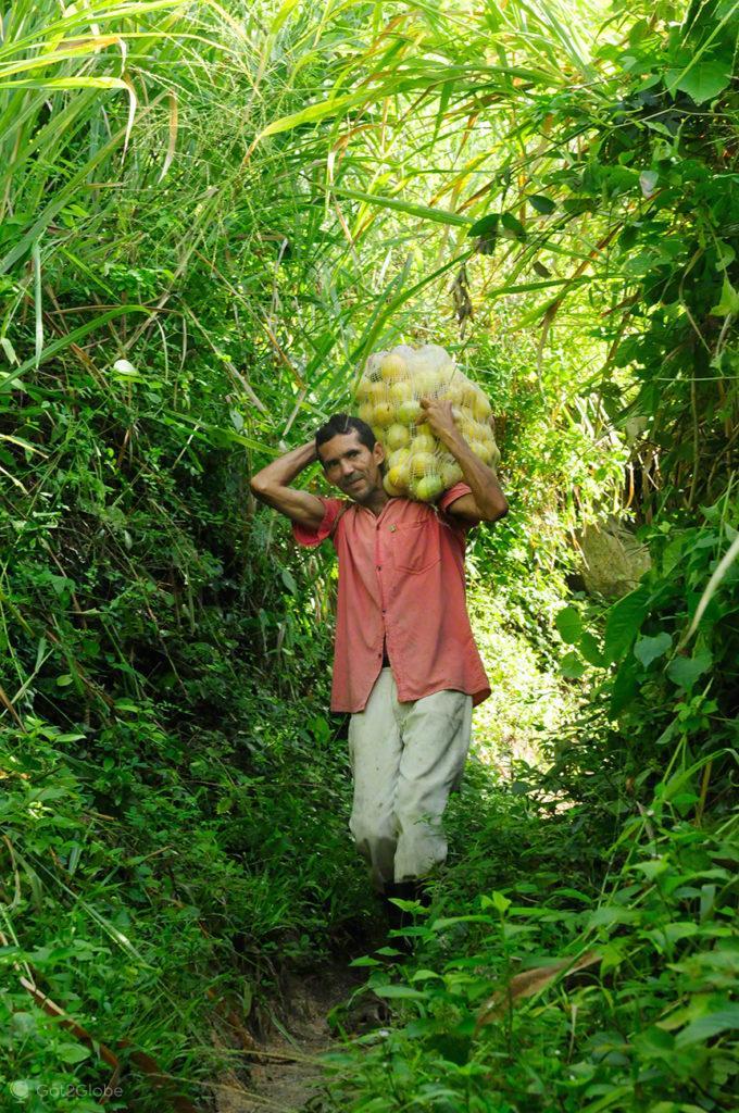 Maracujás, PN Tayrona, Guardiães do Mundo, Colômbia