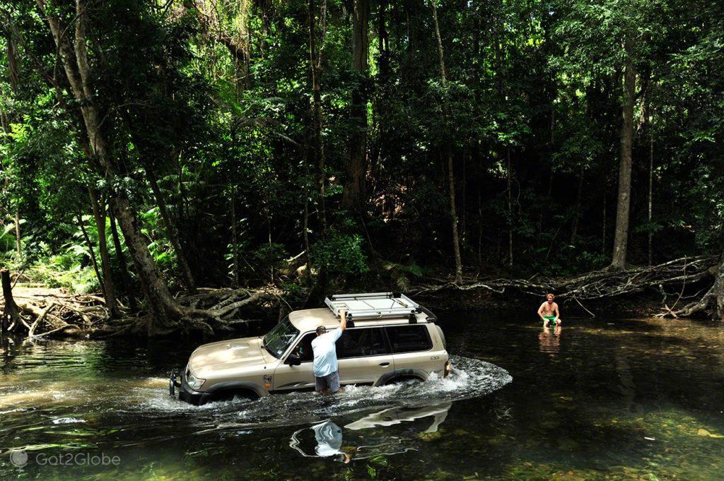Emmagen Creek, Queensland Tropical Australia Selvagem