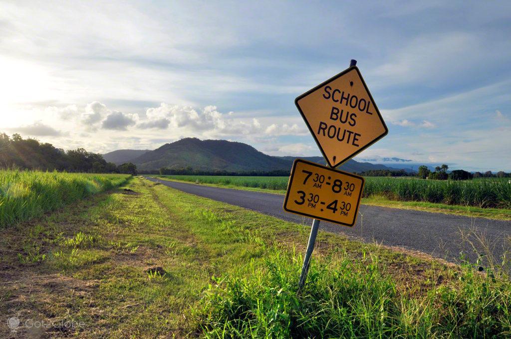 Paragem Autocarro, Queensland Tropical Australia Selvagem