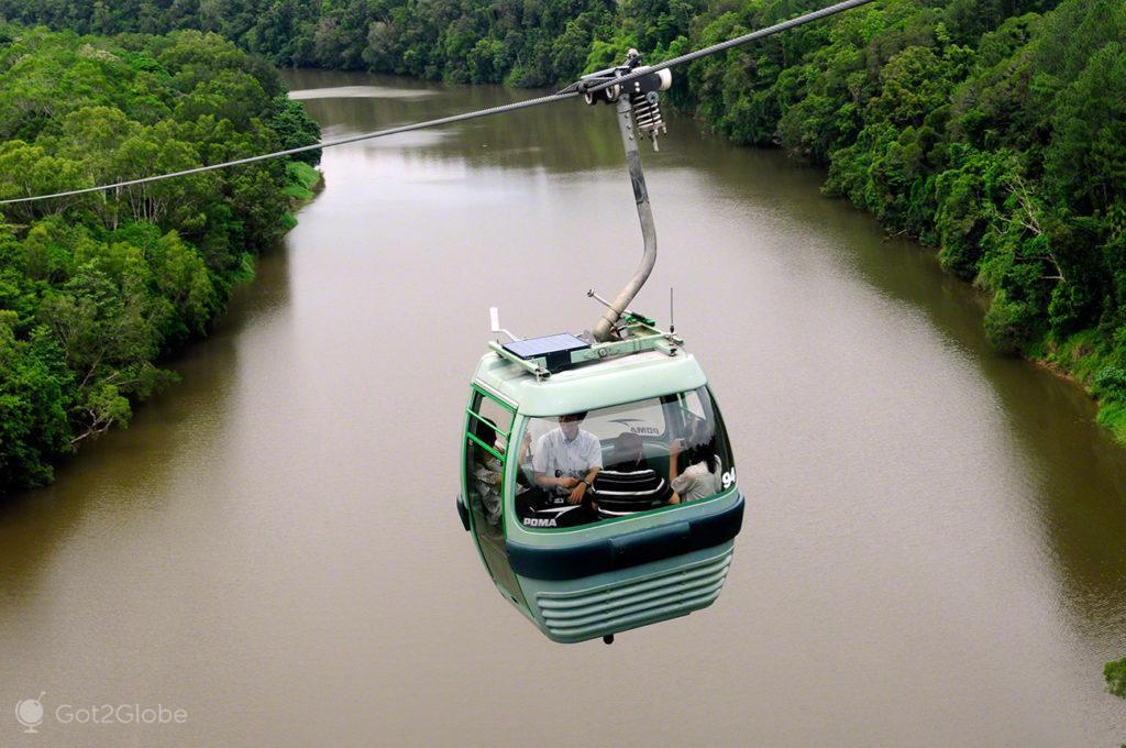 Sky rail, Queensland Tropical Australia Selvagem