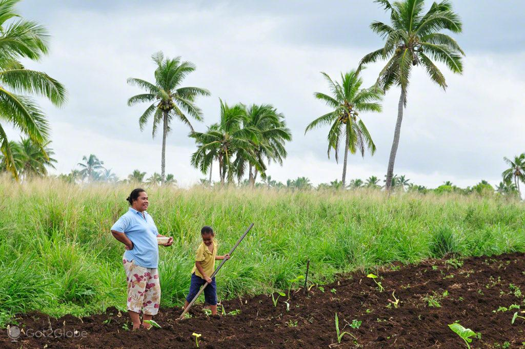 Agricultura de família, Tongatapu, Tonga, Última Monarquia da Polinesia