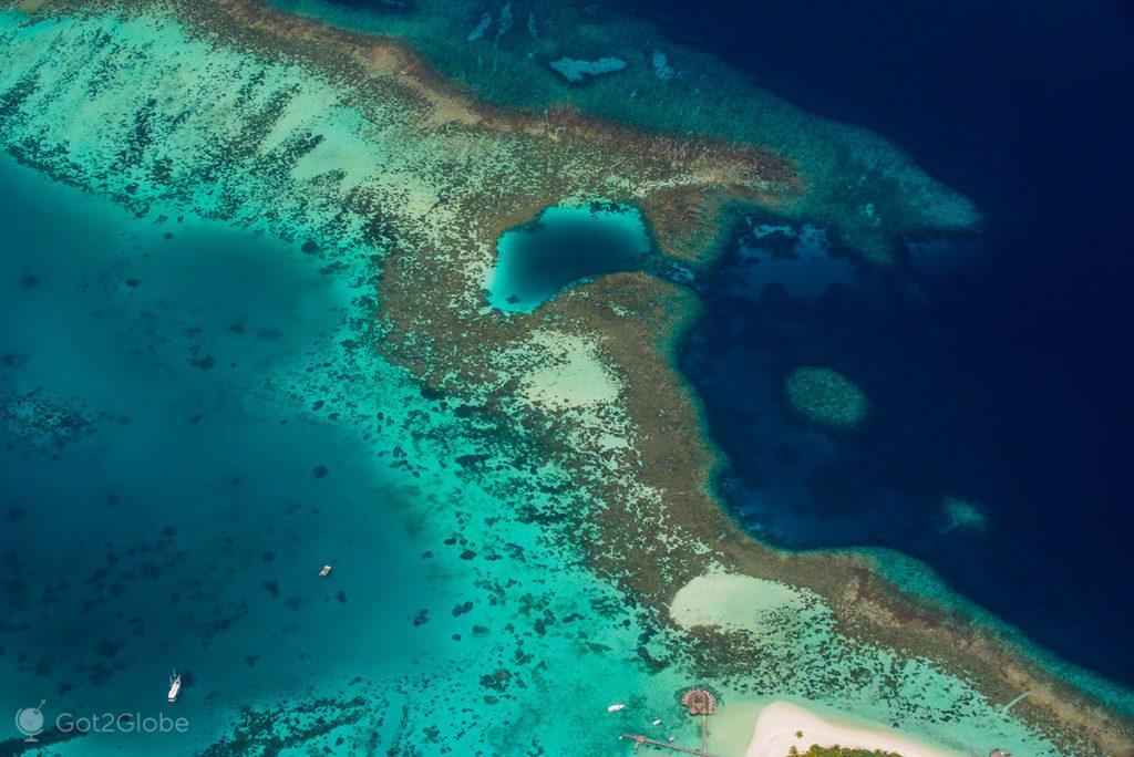 Recife coral, Cruzeiro Princess Yasawa, Maldivas