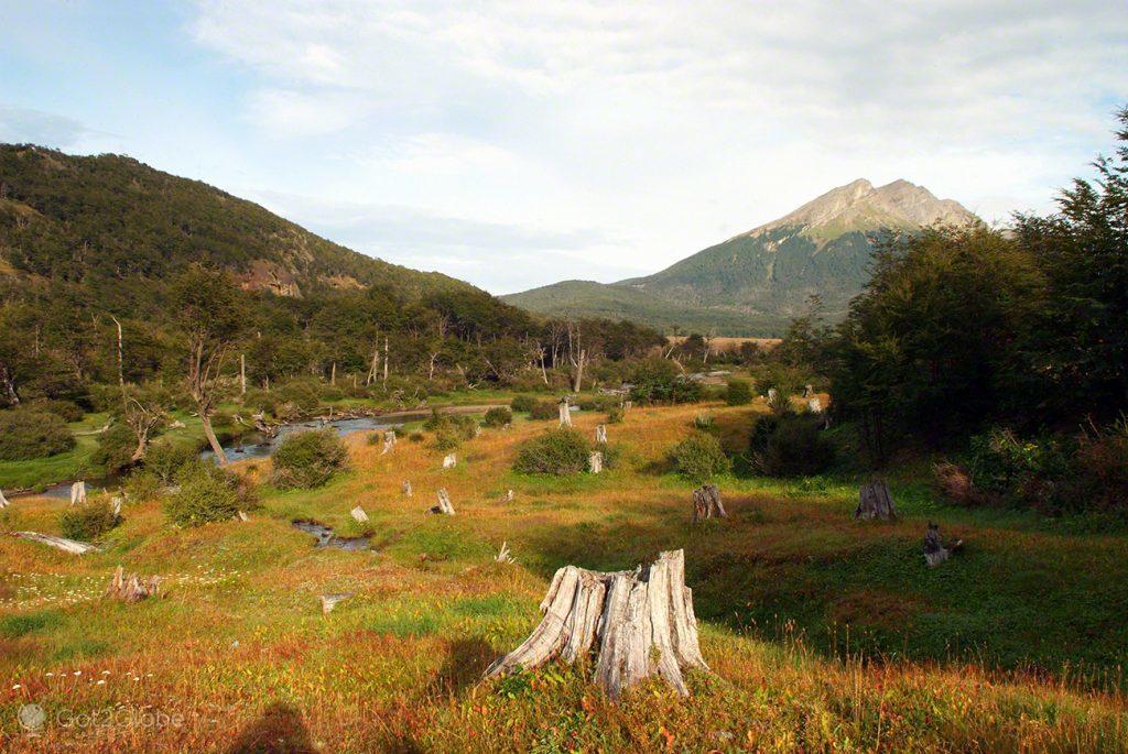 Paisagem de cepos deixados pelos prisioneiros da antiga colónia penal de Ushuaia, Argentina