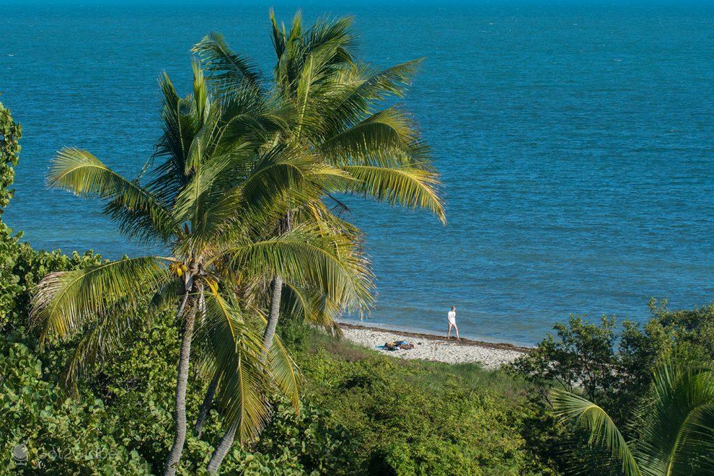 litoral do Bahia Honda State Park, Florida Keys, Estados Unidos da América