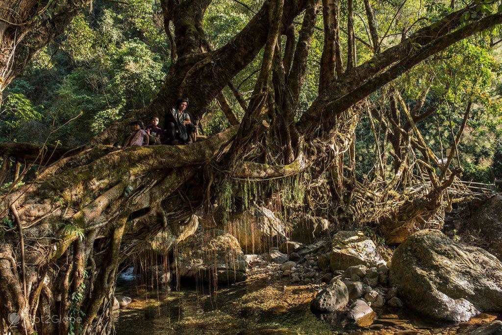 Ponte de raízes, Jingkieng Wahlangseng