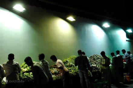 Febre vegetal