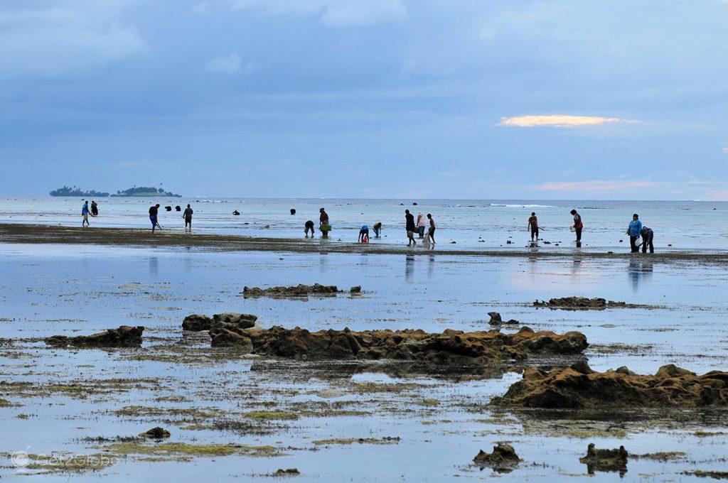 Moradores de Tongatapu vasculham os recifes durante a maré-baixa, em Tonga.