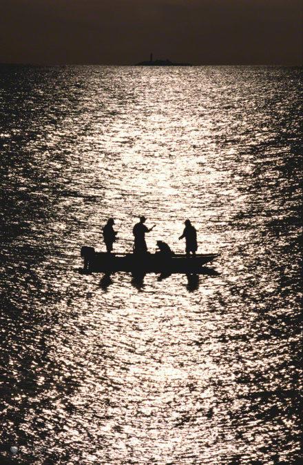 Pesca Preciosa