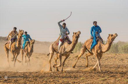 Corrida de camelos, Festival do Deserto, Sam Sam Dunes, Rajastão, Índia