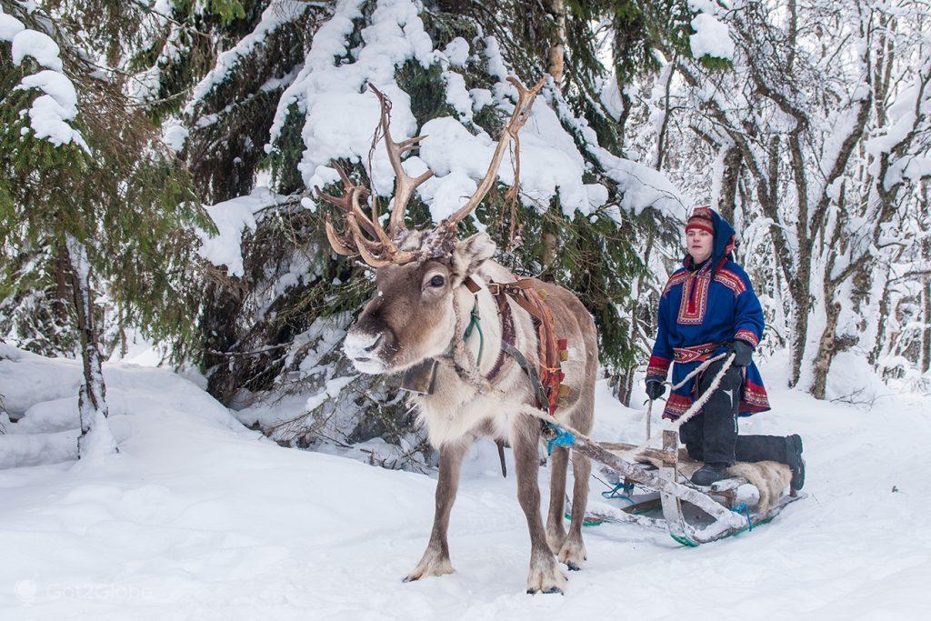 Nativo da região de Kemi rebocado por rena, Finlândia