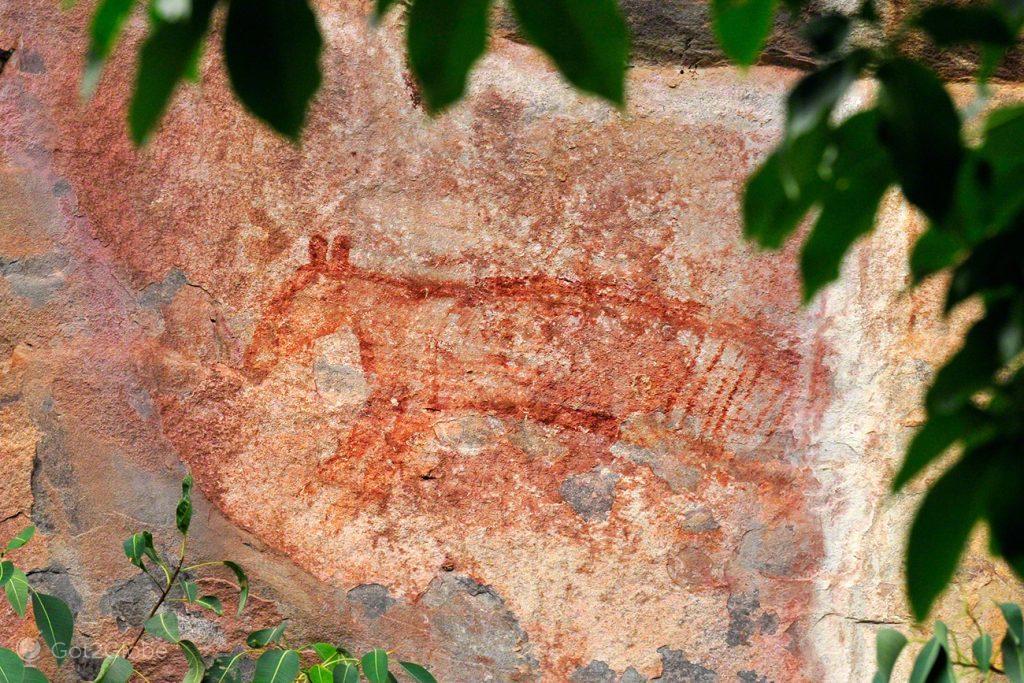 Thylacine rupestre, Alice Springs a Darwin, Stuart hwy, Caminho do Top End