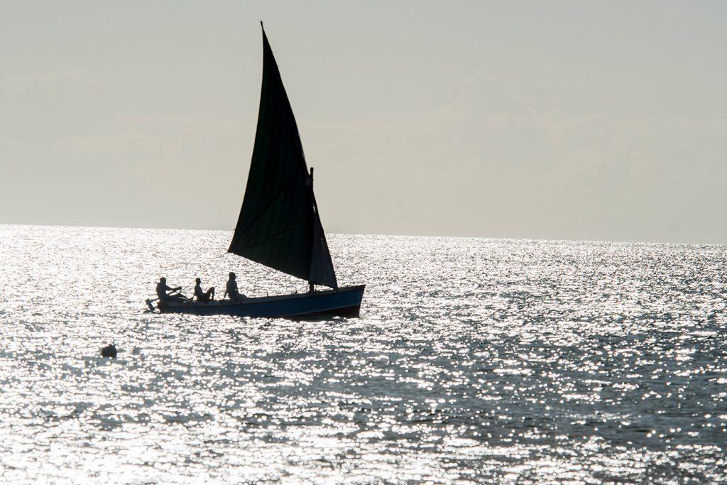 Dhow no Canal de Moçambique