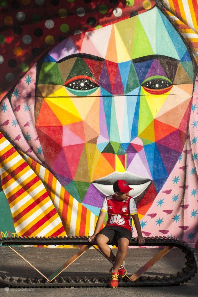 Obra instalada nas Walls de Wynwood, Miami, Estados Unidos da América