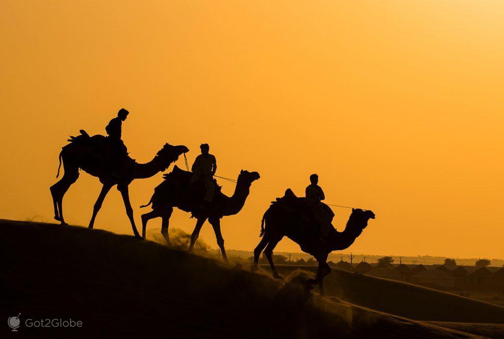 Camelos sobre as Sam Sam Dunes do Deserto do Thar, Rajastão, Índia