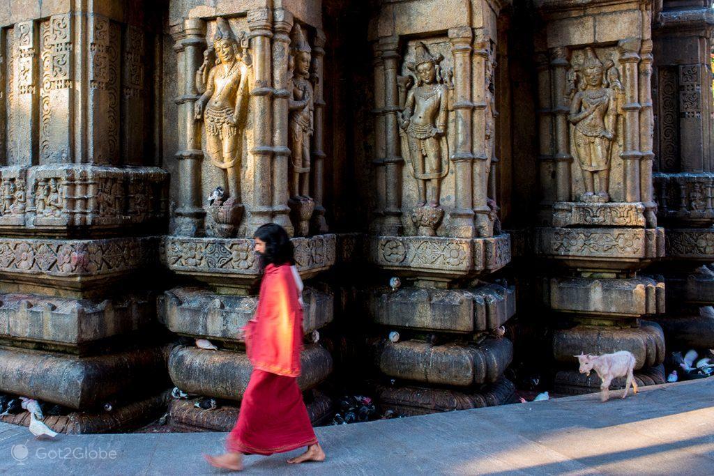 Cabrito segue sacerdote Hindu, Templo de Kamakhya, Guwahati, Índia