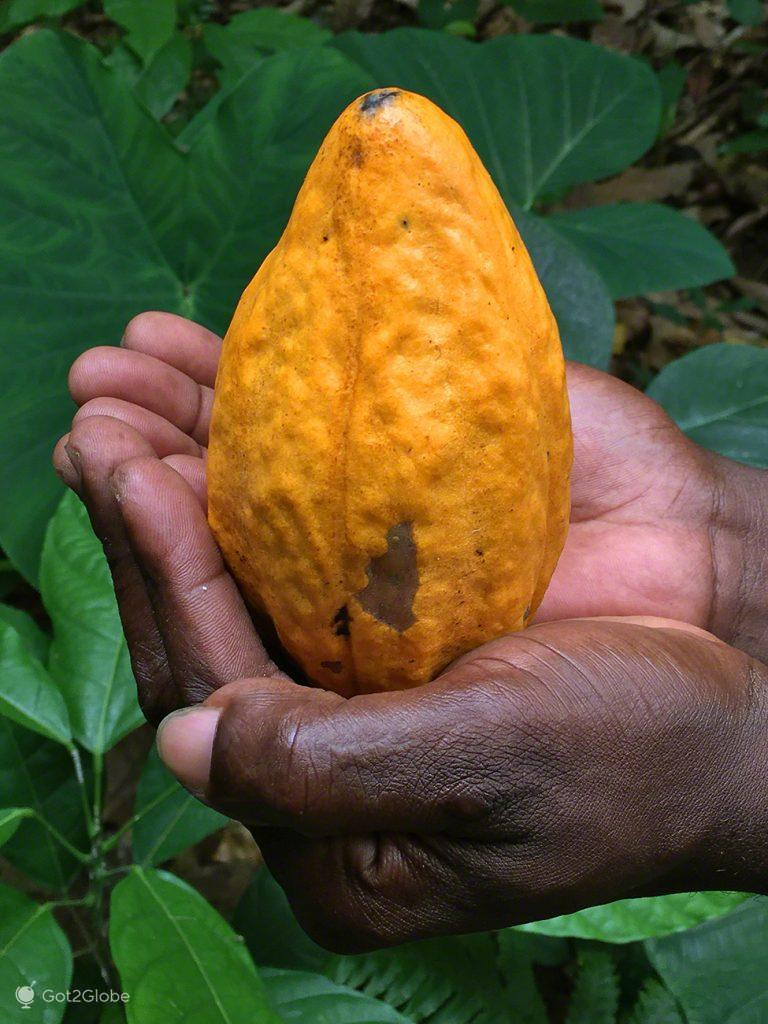 Cacau, Chocolate, Sao Tome Principe