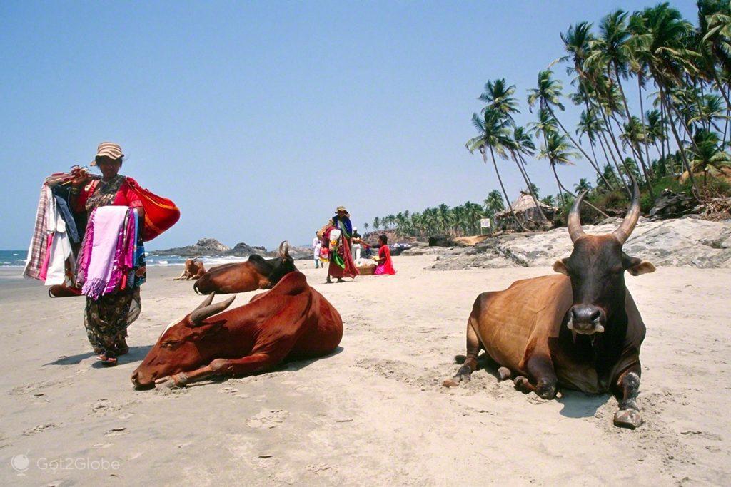 Vendedoras e Vacas balneares