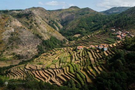 O Pequeno Tibete Português