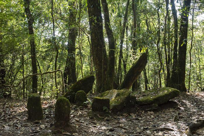 Dolmen na floresta sagrada de Mawphlang em Meghalaya, Índia