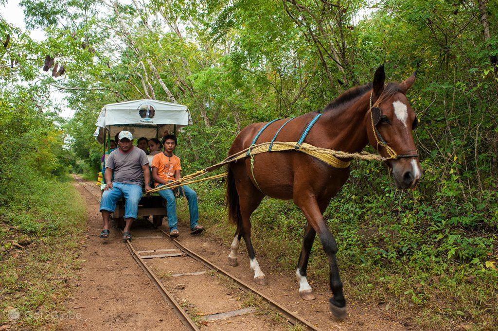 Transporte de acesso ao cenote de Cuzamá, Mérida, México