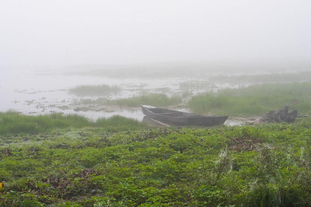 Névoa matinal, Maguri Beel, Assam, Índia