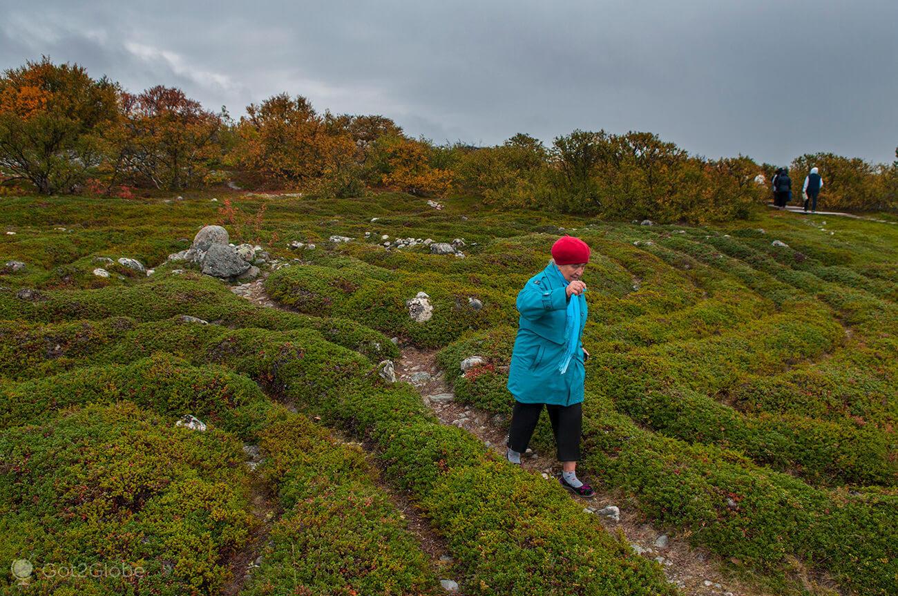 Labirinto de pedras e arbustos, Bolshoi Zayatski, ilhas Solovetsky, Rússia