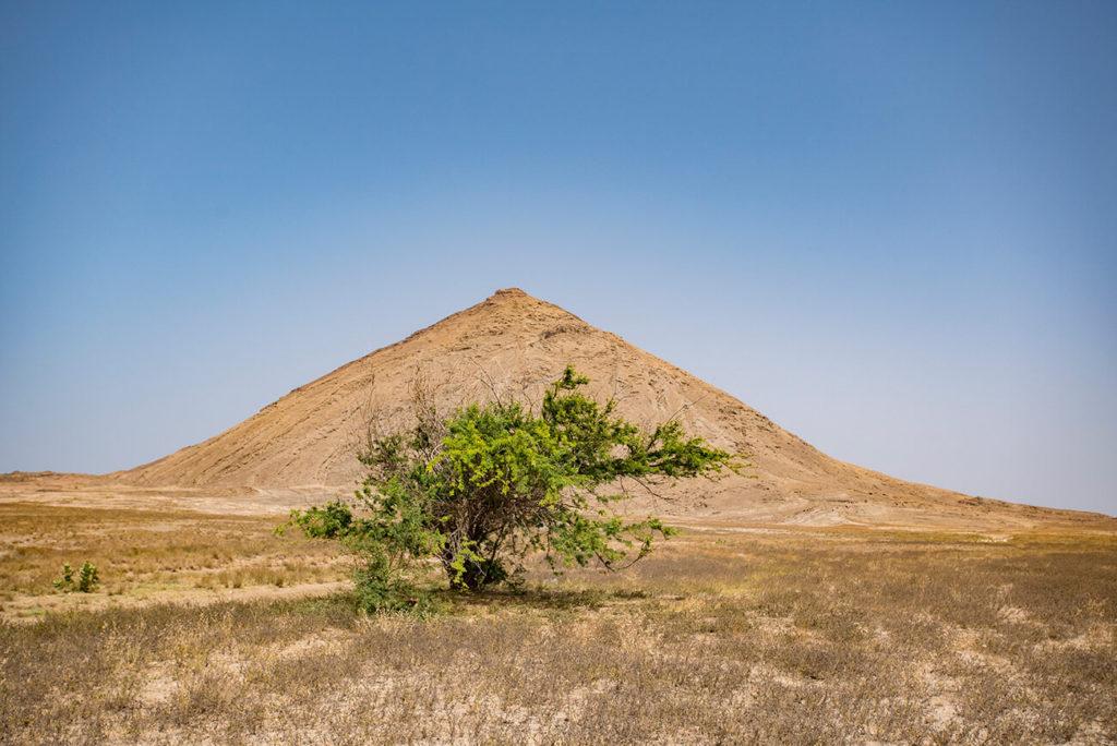 Arbusto e monte, Terra Boa, ilha do Sal, Cabo Verde