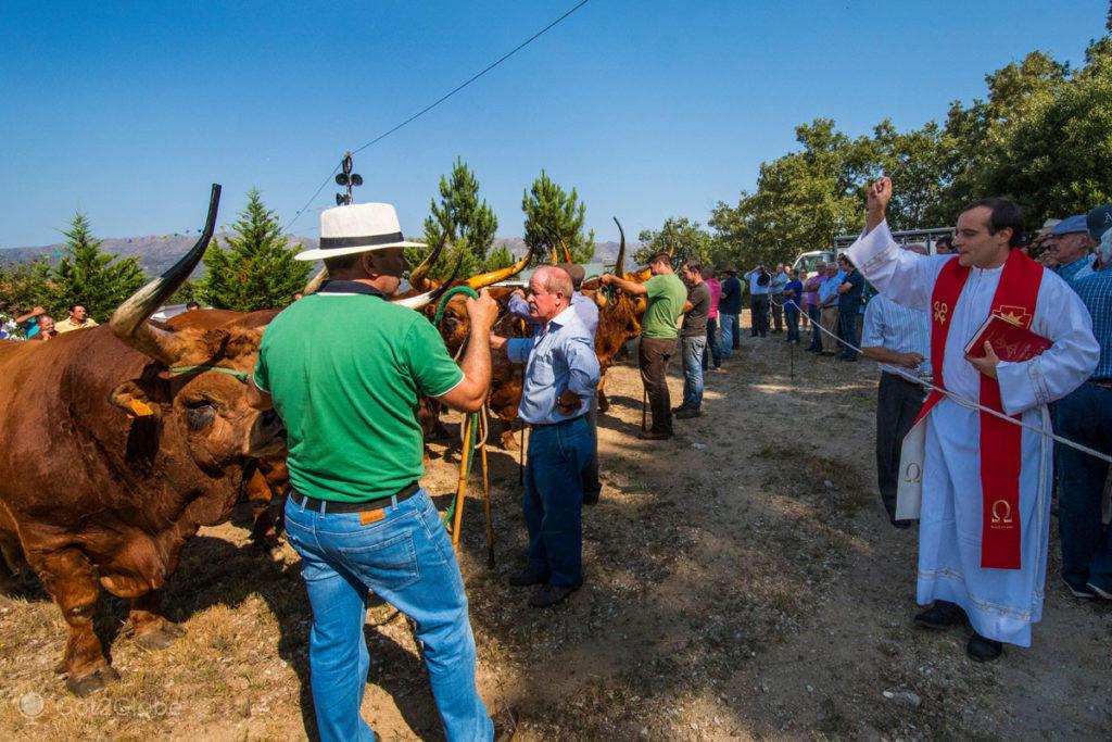 Bênção do Gado de Ferral, casario de granito e telha de Pitões das Júnias, região do Barroso, Trás-os-Montes