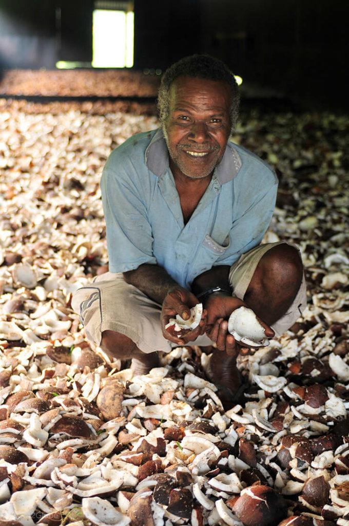 Trabalhador mostra noz de coco, em Espiritu Santo, Vanuatu