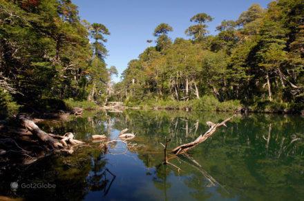 Lago Tinquilco no PN Huerquehue, Pucón, La Araucania, Chile