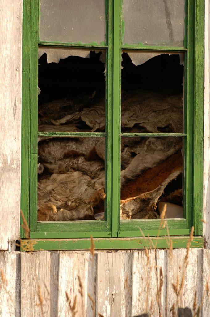 Armazém de peles, estancia Harberton, Tierra del Fuego, Argentina