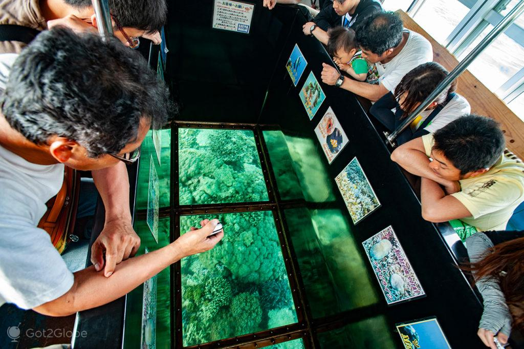 Acção em barco de fundo de vidro na Kabira Bay, Ishigaki, Japão