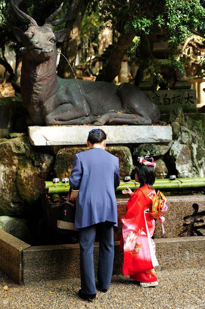 Pai e filho, santuário Kazuga, Nara, Japão